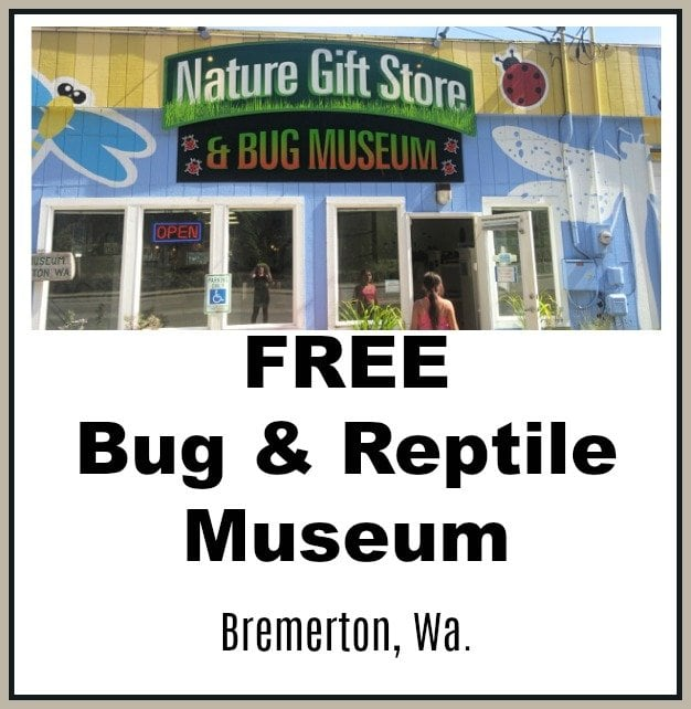 Bug & Reptile Museum in Bremerton (Free To Visit)!