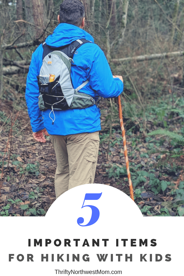 5 Important Items for Hiking with Kids