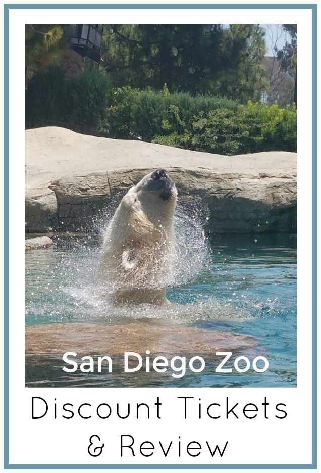 San Diego Zoo Discount Tickets and Review of the Zoo
