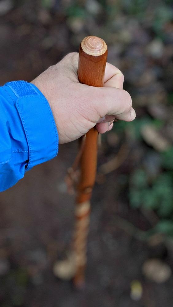Wood Walking Stick by Brazos