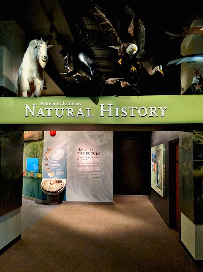 Royal BC Natural History Area