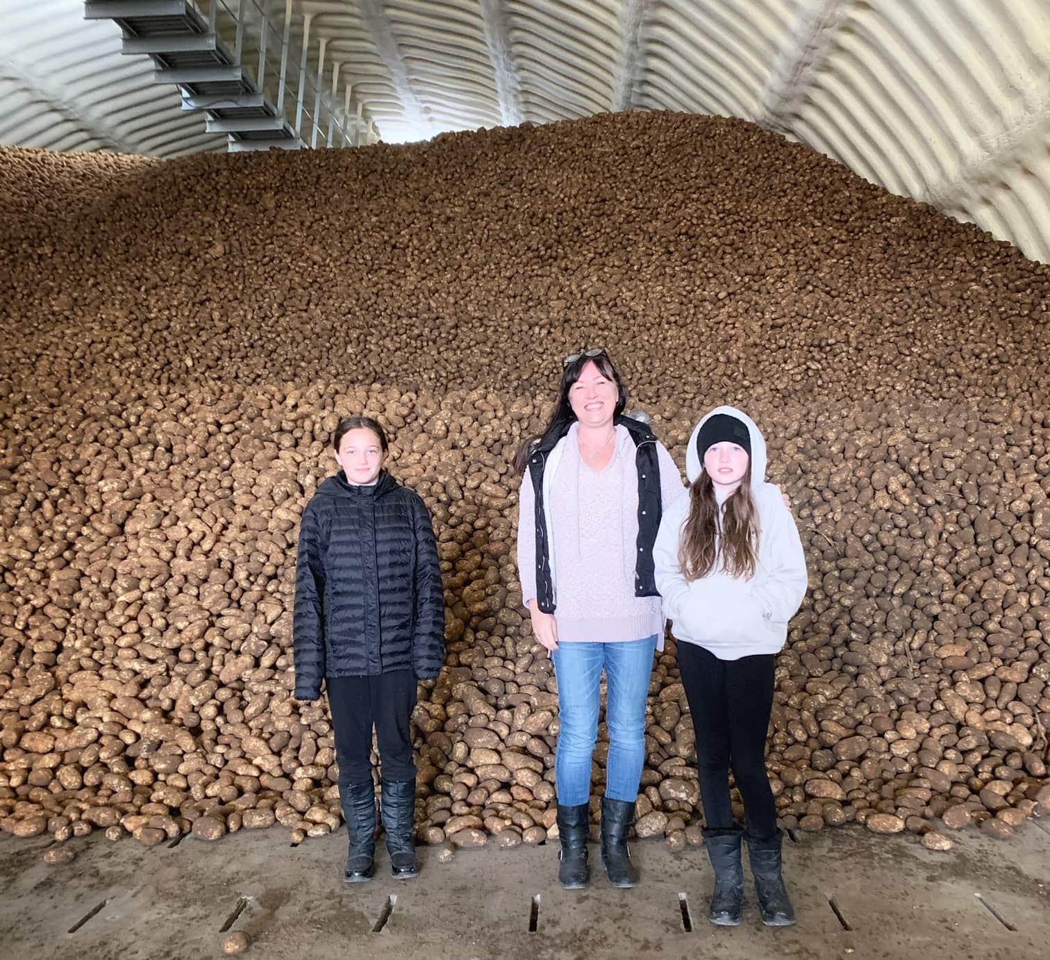 potato farm storage