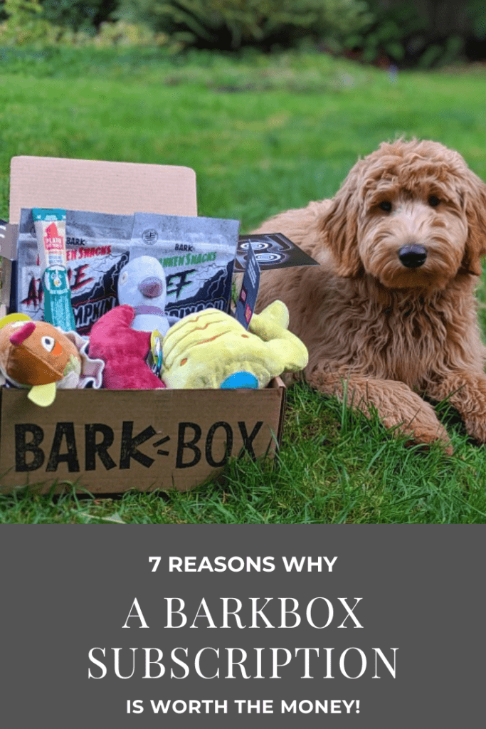 BarkBox Reviews – Why a BarkBox Subscription Box is Worth the Money!