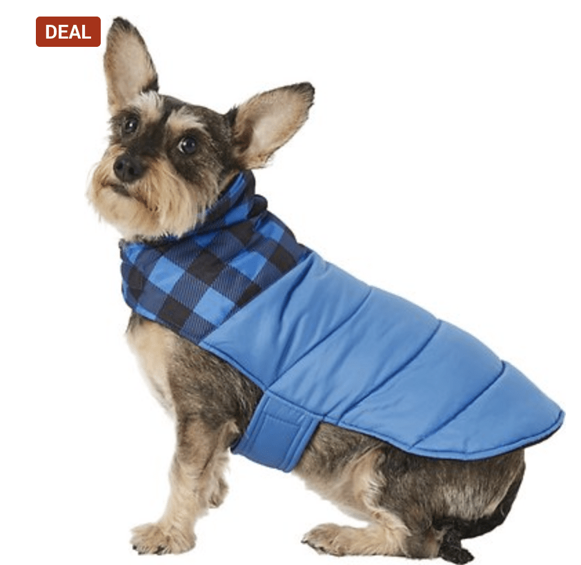 Dog Coats on Sale at Chewy – As low as $3.25!