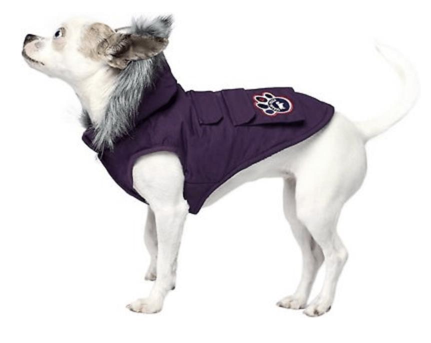 Dog Jacket on Sale