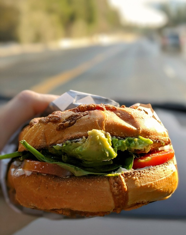 Avocado Bagel Sandwich at Mt Hood