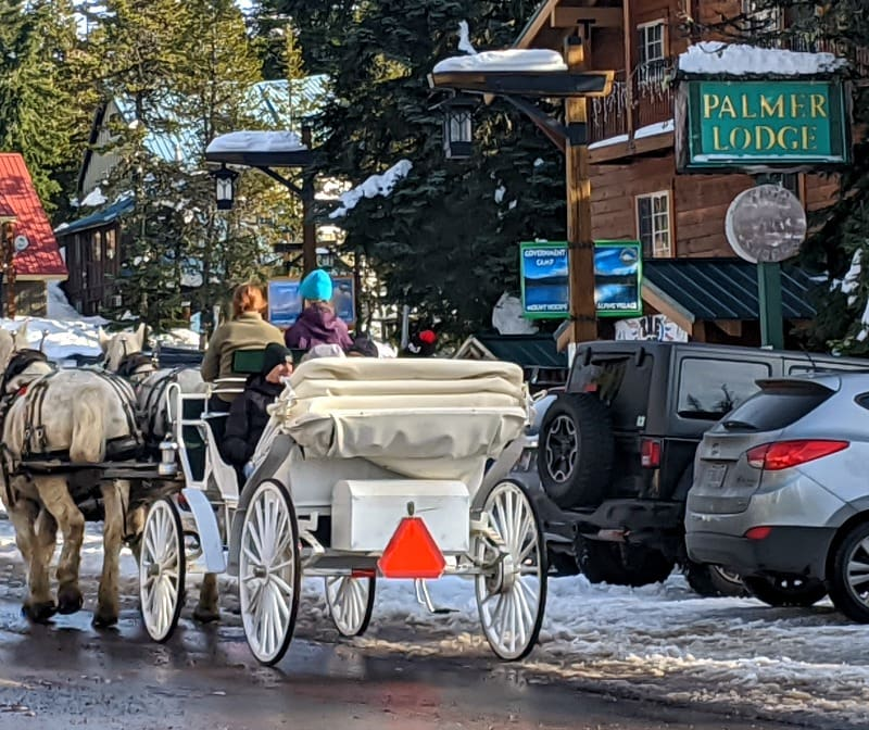Mt Hood Carriage Rides