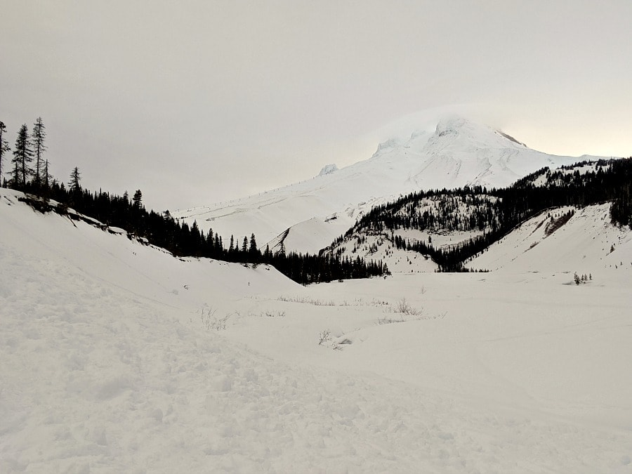 Mt Hood White River Sno Park Snowshoeing