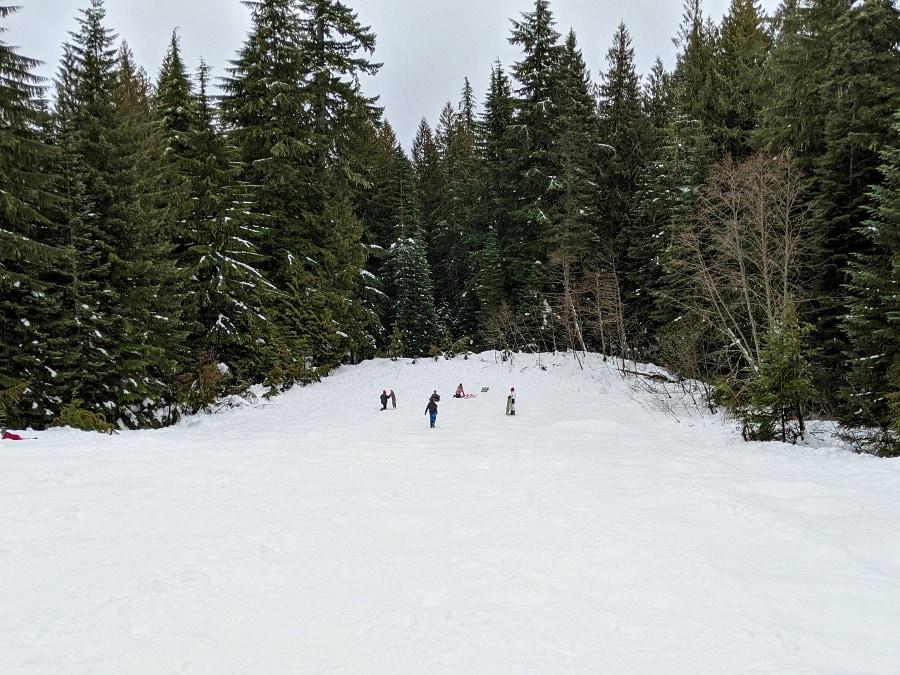 Snow Bunny Sledding Area at Mt Hood