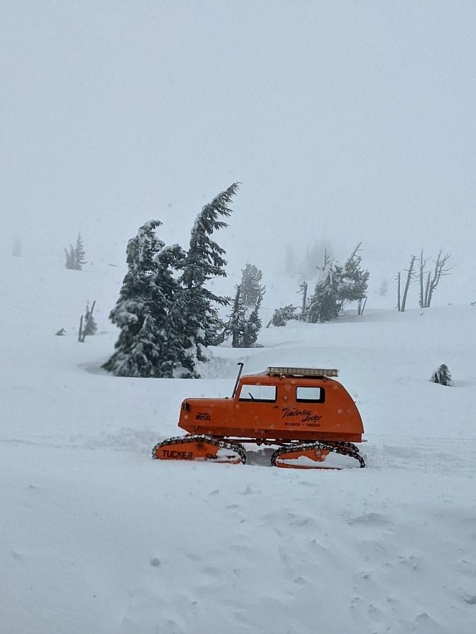Snow Cat at Mt Hood