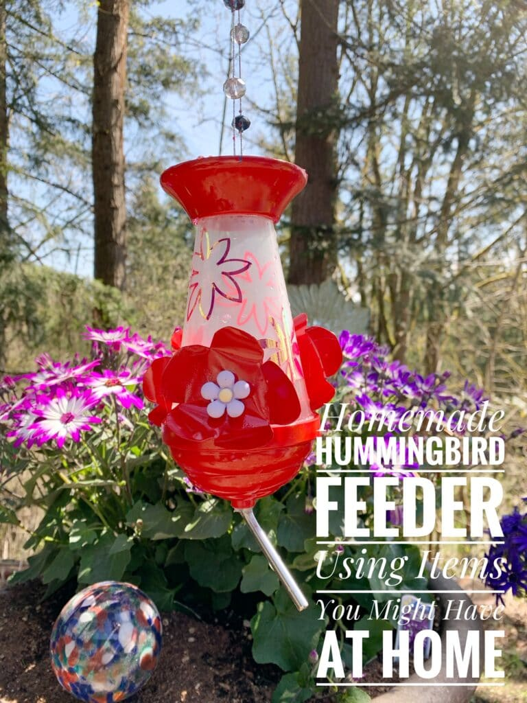 Homemade Hummingbird Feeder (With Items You May Have At Home)!