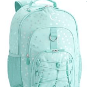 Pottery Barn Iridescent Backpack