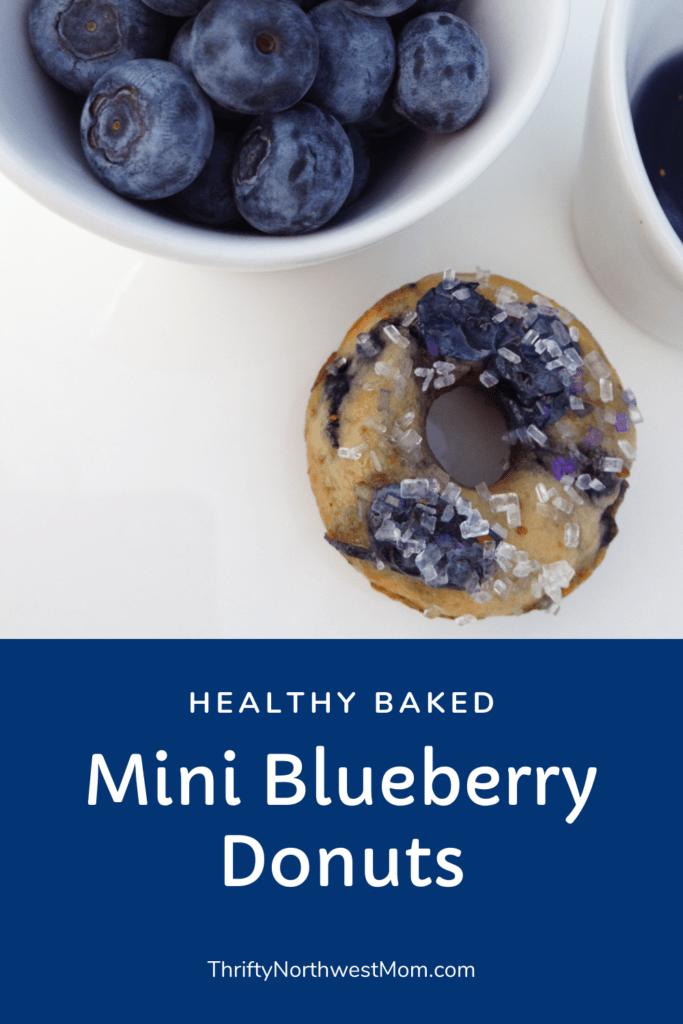 Mini Blueberry Donut Recipe (Baked not Fried)!