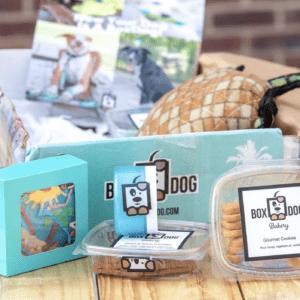 BoxDog Subscription Box - Dog box