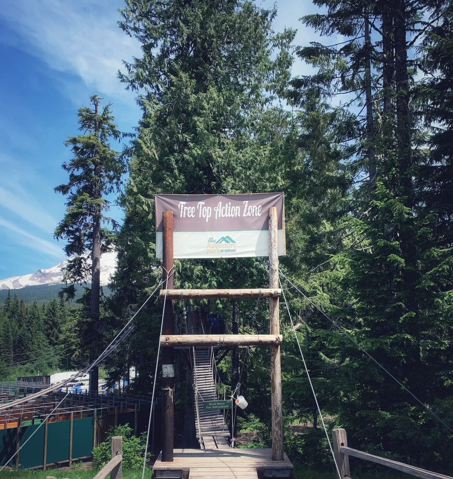 Tree top arial park at Mt. Hood Ski Bowl