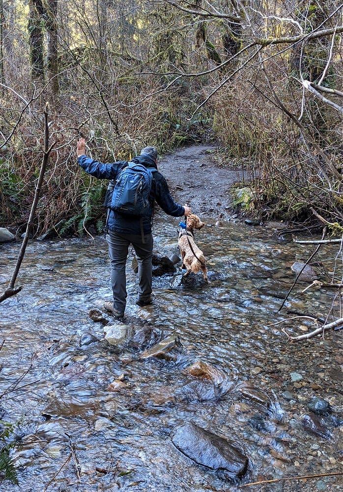 Mud at Cherry Creek Falls