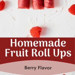 Homemade Fruit Rollups - Berry Version