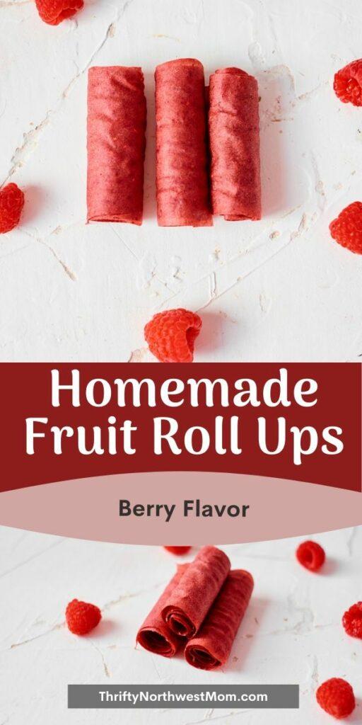 Homemade Fruit Roll Ups – Berry Version!