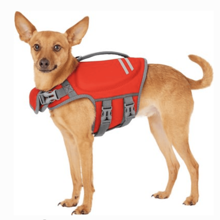 Frisco Neoprene Dog Life Jacket