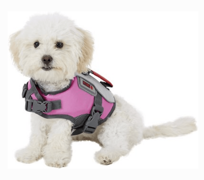 Kong Sport Dog Flotation Vest