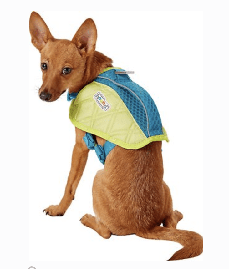 Outward Hound Sport Dog Life Jacket
