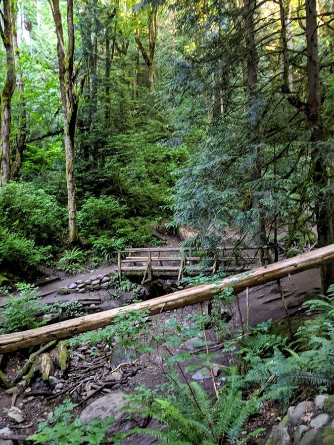 Trail at Coal Creek Waterfall