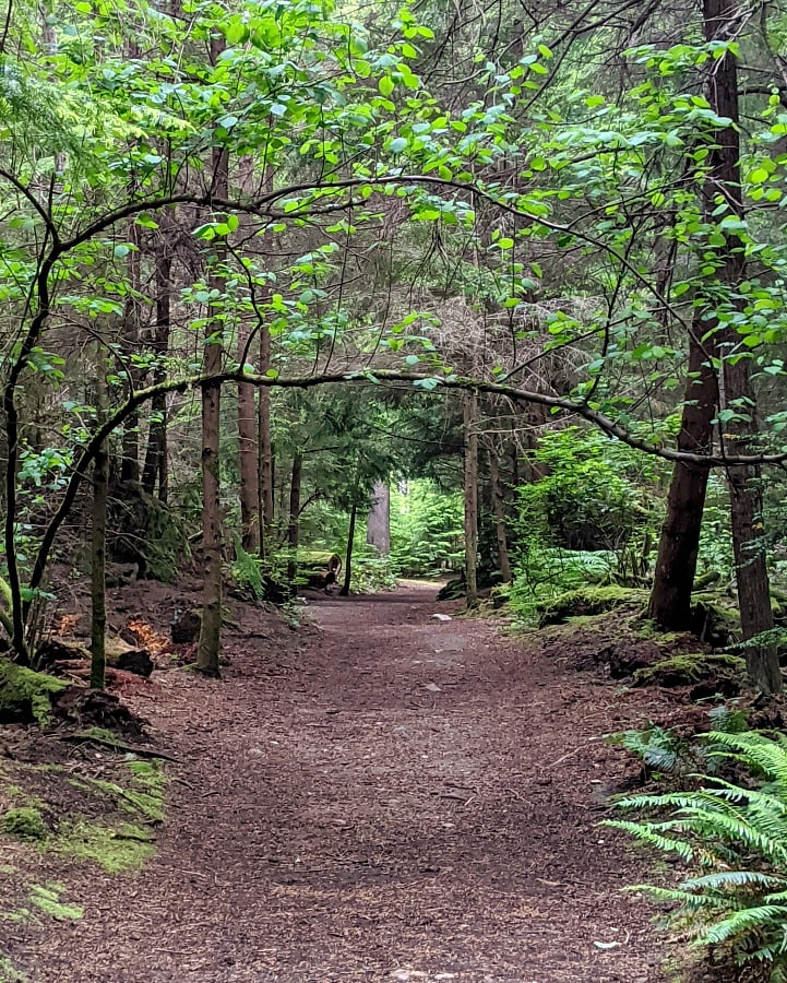 Trails at Point Defiance Park