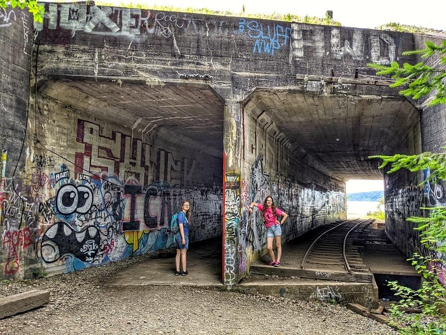 Train Tracks at Sequalitchew Trail