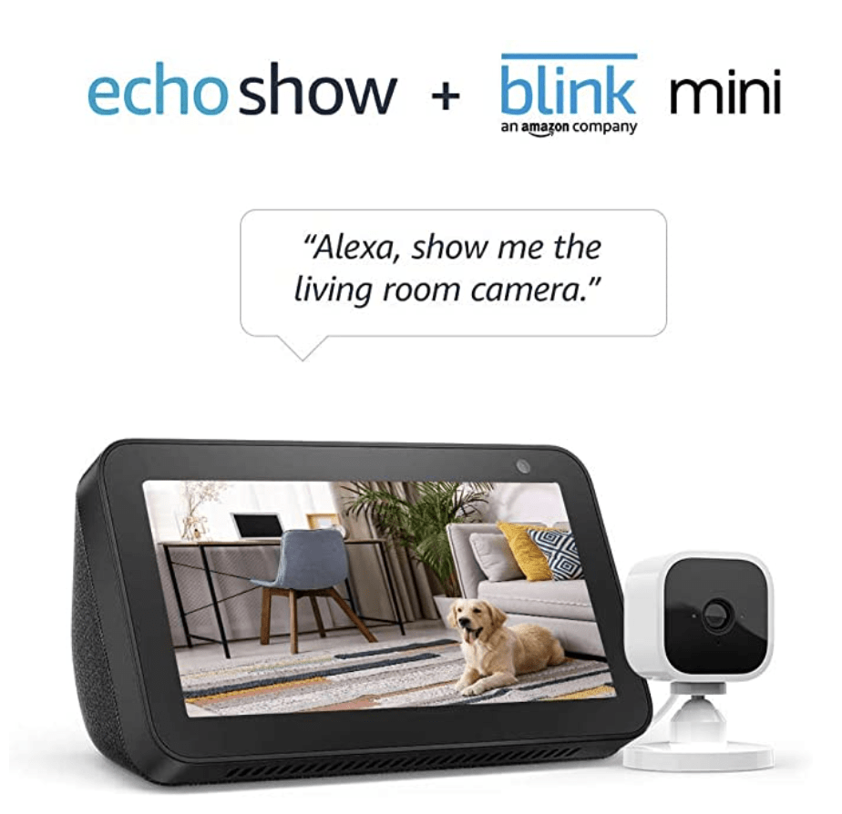 Echo Show with Blink Mini