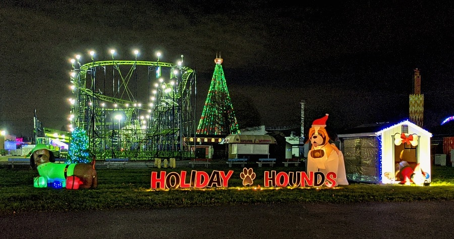 Holiday hounds at the fair