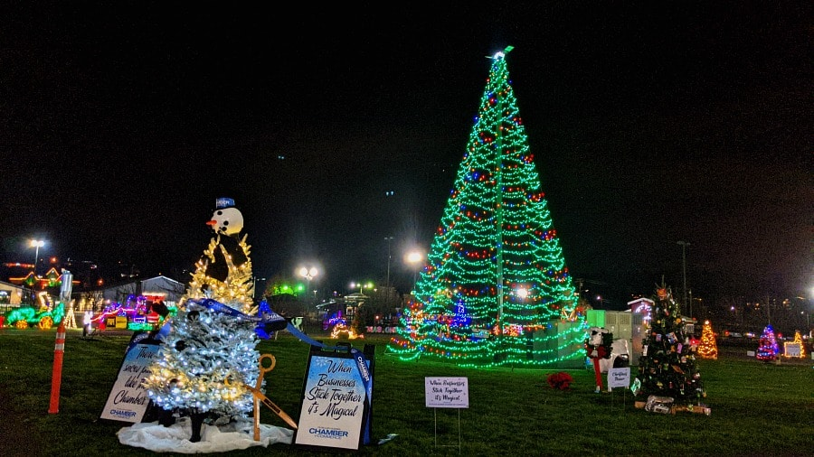 Hometown Holiday Forest