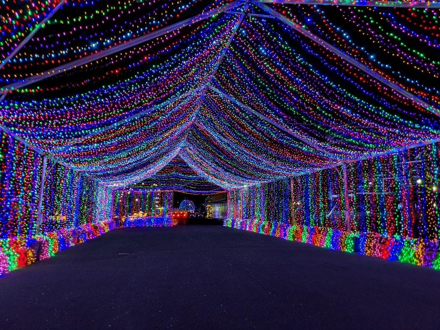 Light up the Night Tunnel