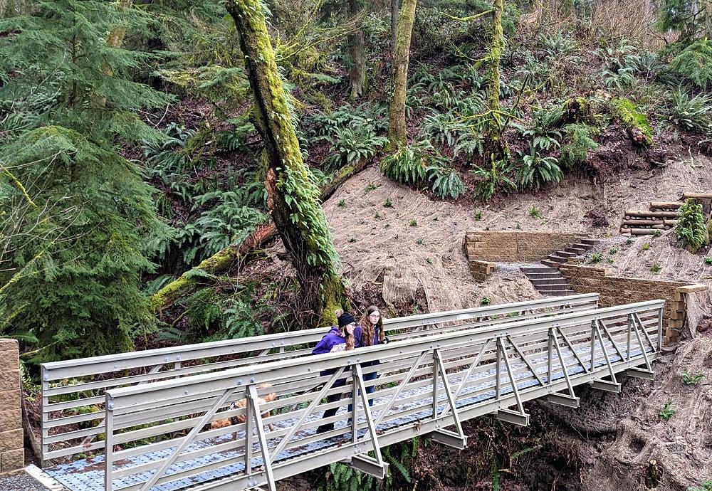 Dash Point New Bridge on Hiking Trail