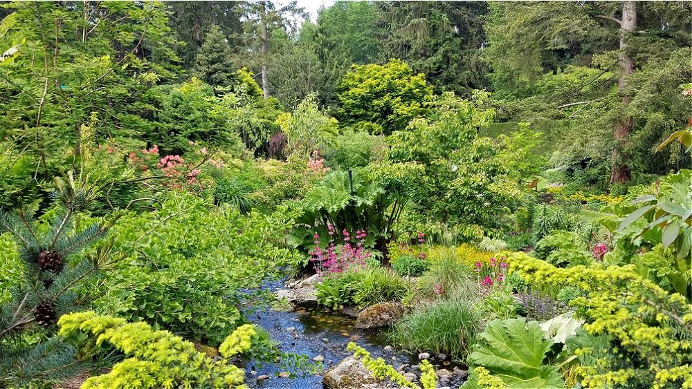 Powellswood Gardens Pond