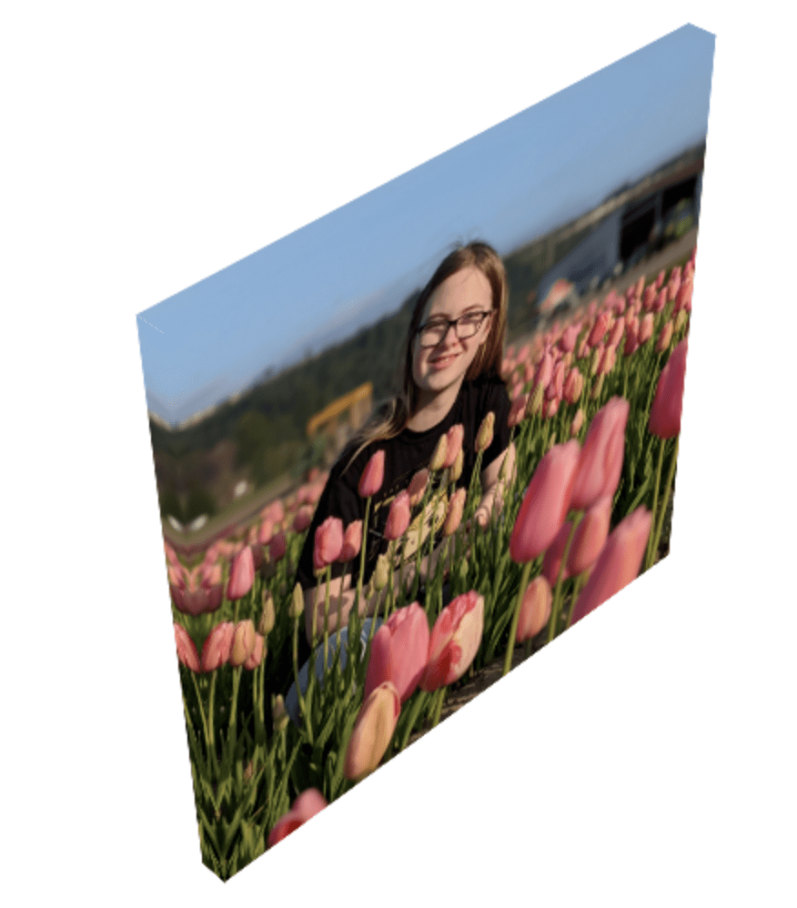 Canvas print in the tulips