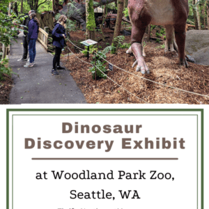 Dinosaur Discovery Exhibit at Woodland Park Zoo