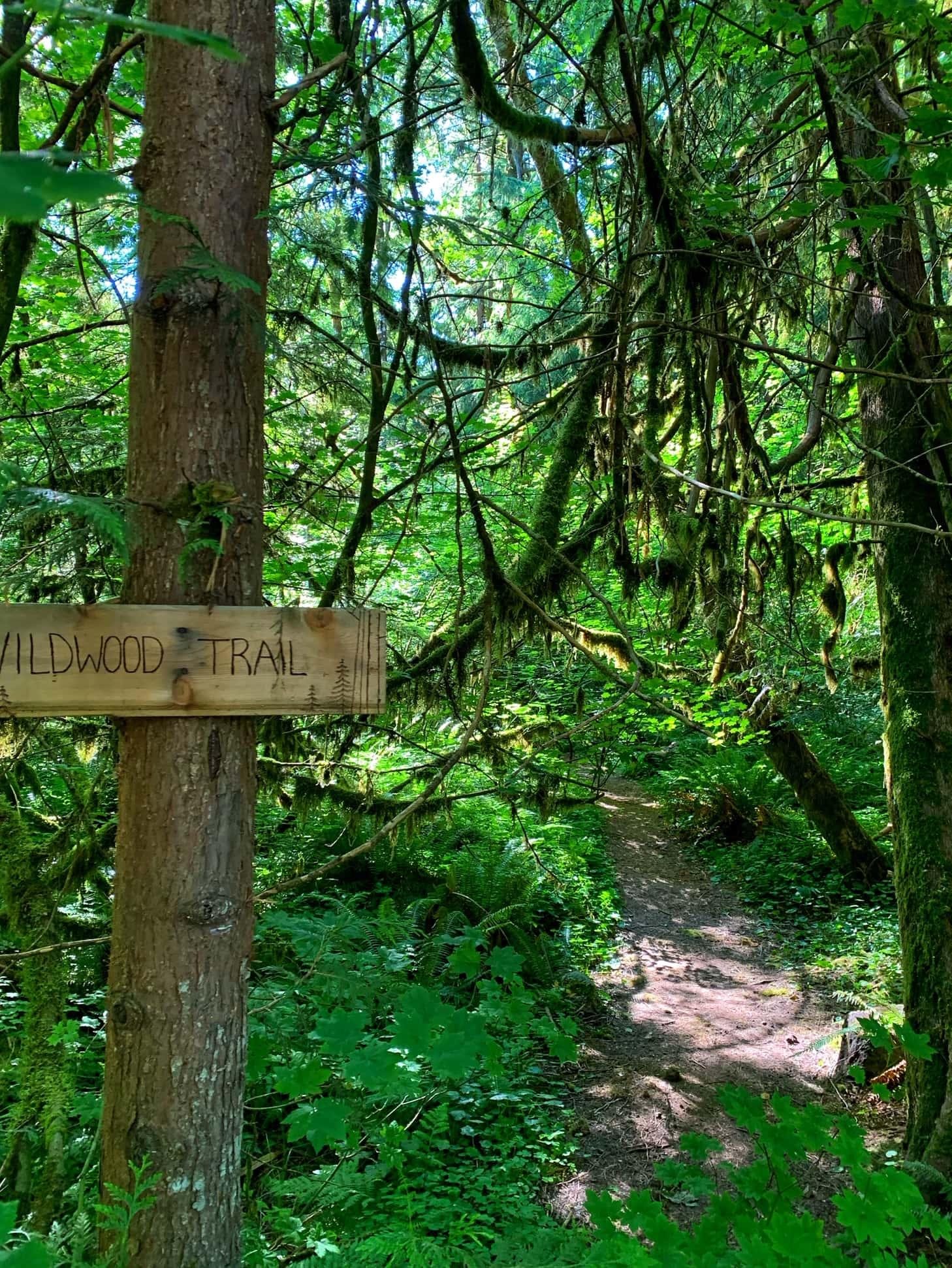 hiking trails at mt hood village