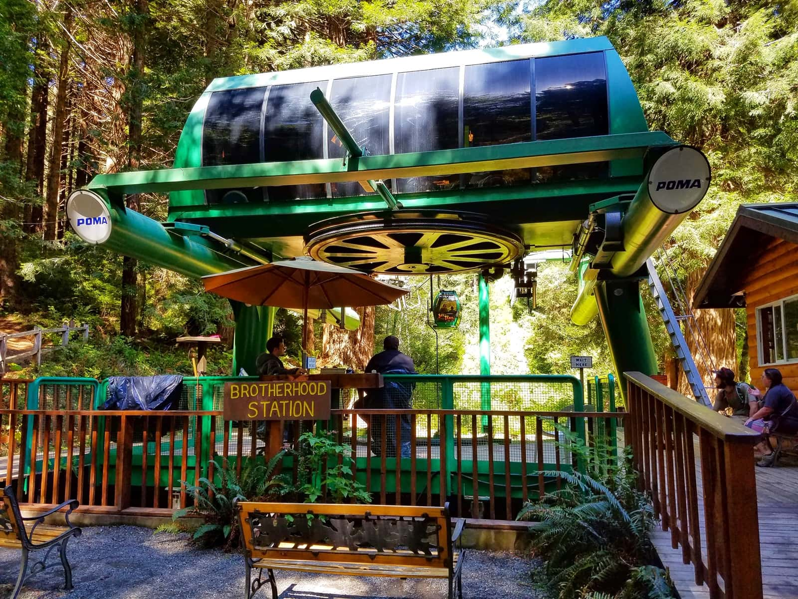 Gondola ride redwoods