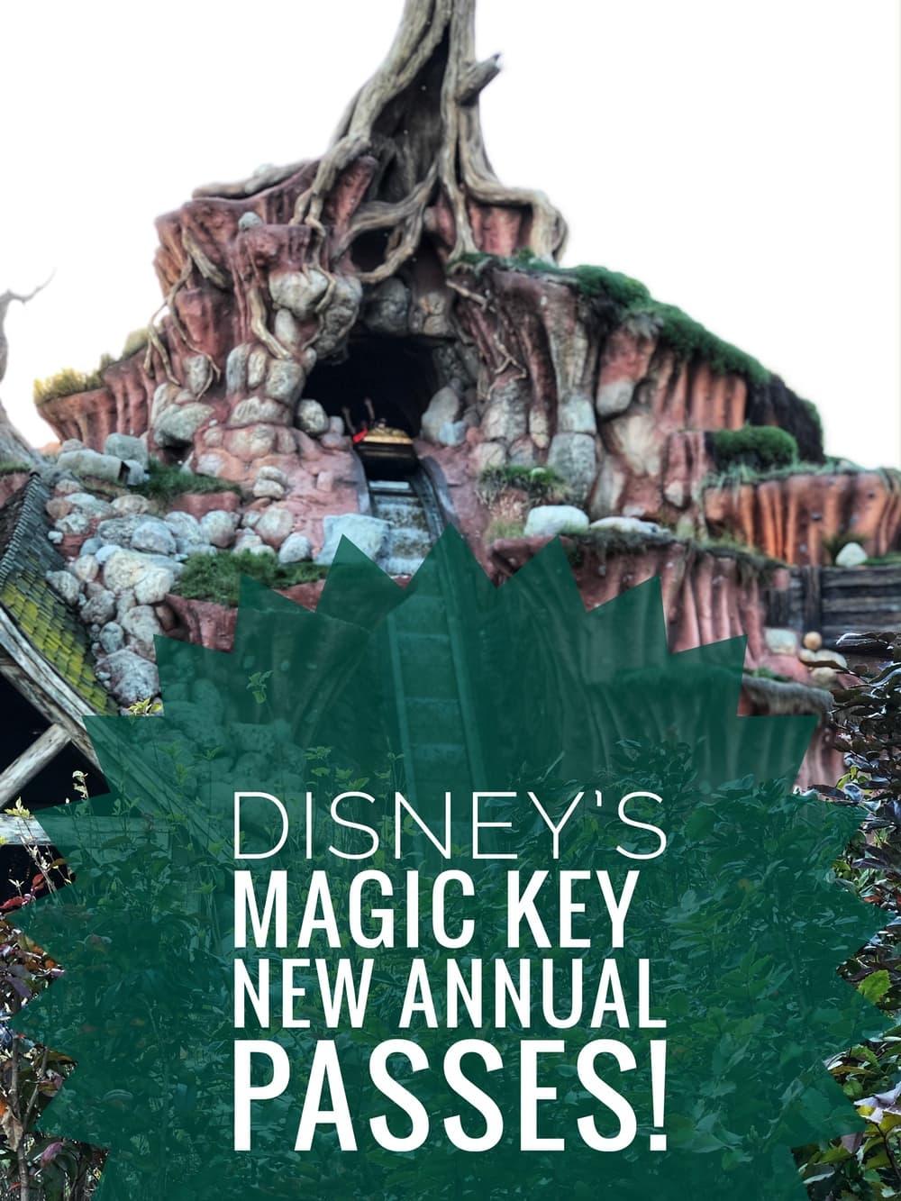 disney magic key passes