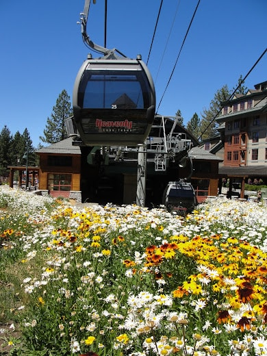 Heavenly Village Gondola