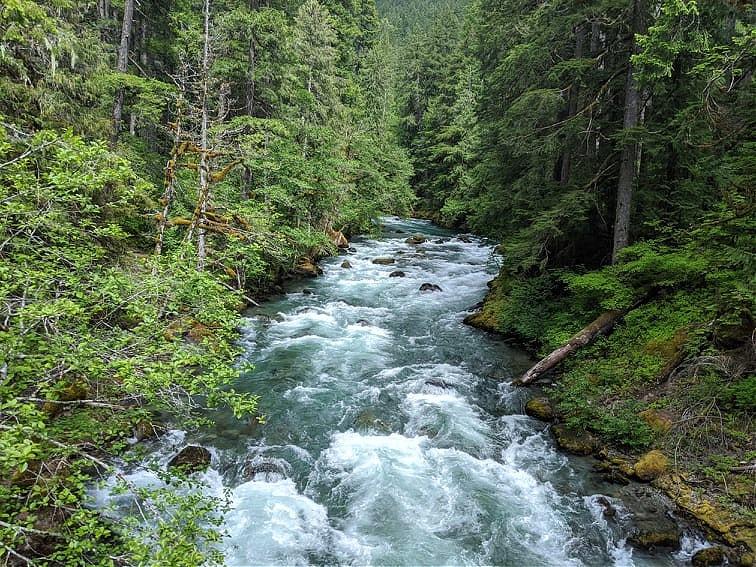 River near Silver Falls