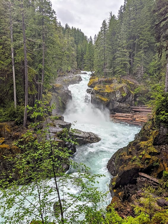 Silver Falls Mount Rainier