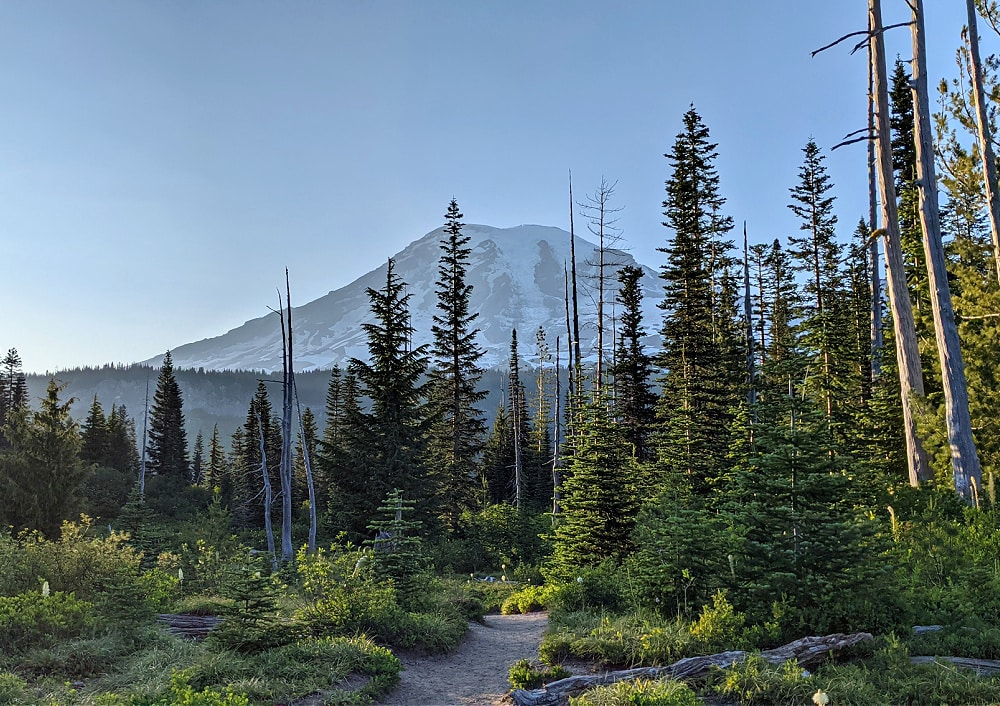 View of Mount Rainier on Bench Snow Lakes Trail