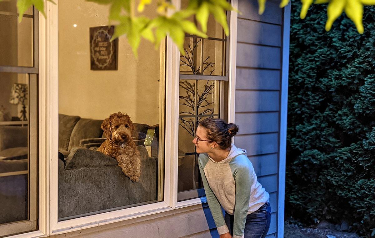 Peeking at the dog in the window