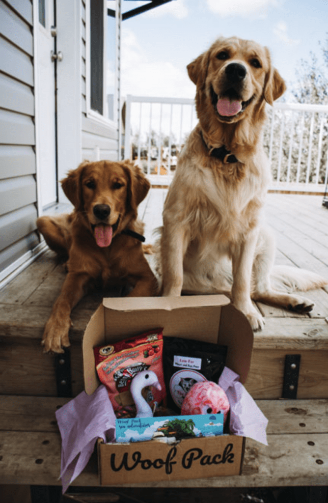 Woof Pack Dog Subscription Box – 1st Box for just $8! Free Bonus Toy!